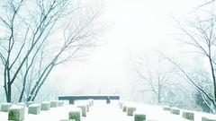 December 24, 2017 (Katsujiro Maekawa) Tags: seorak gapyeong korea landscape 4seasons earth nature mountain tree 설악 가평 한국 풍경 사계절 지구 자연 하늘 산 그름 나무 스마트폰 雪岳 加平 韓国 風景 四季 地球 自然 空 山 木 スマホ 설경 눈 雪 雪景色 snow snowscape heavenlyparents trueparents prayer truelove ngc smartphone スマートフォン blessing 축복 祝福 aasia winter 겨울 冬 cold healing holy holyground