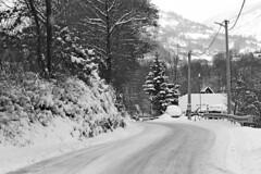 Road to the mountain (superhic) Tags: road mountain snow winter put sneg zima planina bosnia bosna