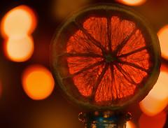 O for...duh (johnsinclair8888) Tags: macromondays macro orange bokeh affinityphoto art dof nikon 105mm dark vowel