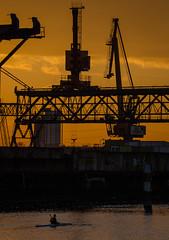 Krane im Rheinhafen (KaAuenwasser) Tags: kran kräne krane hafen rheinhafen karlsruhe sonnenuntergang licht sonne farben himmel gelb golden wasser binnenhafen schienen architektur industrielandschaft rhein fluss hafenbecken becken anlegestelle firmen
