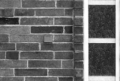 Brick and Glass (HansenPrime) Tags: monochrome blackandwhite black white brick panel square shape shapes glass window architecture