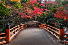 Bridge across forever (aruprayone) Tags: japan hiroshima miyajima landscape nature autumn colours country fujifilm xt2 island bridge garden serene zen shinto