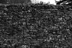 Wall at Sizergh Castle (timnutt) Tags: sizergh sizerghcastle cumbria 35mm children garden xt2 bw acros monochrome lancashire mono fuji fujichrome family blackandwhite 35f2wr fujifilm