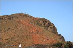 8469 - Mullayanagiri , Chikmagaluru (chandrasekaran a 55 lakhs views Thanks to all.) Tags: mullayanagiri hills peak trekking chikmagaluru karnataka india canoneos6dmarkii tamronef28300mm
