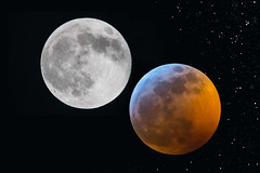 Eclipsed (Tom Fenske Photography) Tags: full moon superbloodwolfmoontotallunareclipse night sky stars eclipse lunar