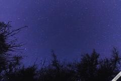 Rollright Stones (philal.) Tags: tokina1116 stars nightsky astrophotography longexposure