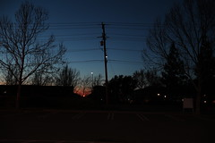 Almost Gone (jacampos) Tags: california concord dawn trees powerlines sun sunset backlit sky