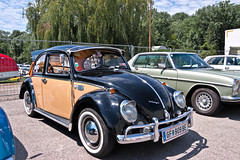 Volkswagen Typ 1 Modell 11 1300 Beetle 1966 (7455) (Le Photiste) Tags: clay volkswagentyp1beetle volkswagentyp1modell11130040beetle cv germancar germanicon oddvehicle oddtransport rarevehicle 1966 tullnaddonauaustria austria volkswagenagvagwolfsburggermany perfectview mostrelevant afeastformyeyes aphotographersview autofocus artisticimpressions alltypesoftransport anticando blinkagain beautifulcapture bestpeople'schoice bloodsweatandgear gearheads creativeimpuls cazadoresdeimágenes carscarscars canonflickraward digifotopro damncoolphotographers digitalcreations django'smaster friendsforever finegold fairplay fandevoitures greatphotographers groupecharlie peacetookovermyheart hairygitselite ineffable infinitexposure iqimagequality interesting inmyeyes livingwithmultiplesclerosisms lovelyflickr myfriendspictures mastersofcreativephotography niceasitgets photographers prophoto photographicworld planetearthbackintheday planetearthtransport photomix soe simplysuperb showcaseimages slowride simplythebest simplybecause thebestshot thepitstopshop theredgroup thelooklevel1red themachines transportofallkinds vividstriking wow wheelsanythingthatrolls yourbestoftoday oldtimer