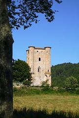Chateau d'Arques (Niall Corbet) Tags: france occitanie languedoc roussillon aude chateau arques