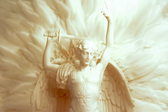 ARCHANGEL MICHAEL IN MARBLE HORIZONTAL (MARIA PIOTROVSKAJA) Tags: archangel michael marble statue sculpture stone greek religious isolated victory war battle dramatic active man angel spirit god lord church religion spiritual faith holy defender powerful power sword light antique italy rome curly hair smile smiling feather wings bright white guardian memorial history hero fantasy divinity ancient stand hand crafted still life portrait person