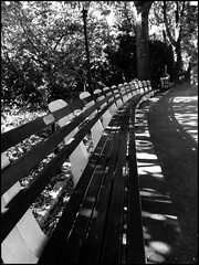 NYC... Central Park...  HBM (angelakanner) Tags: canonsx50 nyc centralpark happybenchmonday wood bw o ch