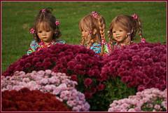 Kindergartenkinder ... gleich kommt Adebar .... (Kindergartenkinder 2018) Tags: blumen park schloss arcen kindergartenkinder annemoni milina tivi