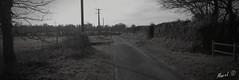 Un autre chemin NB (Mawel.P) Tags: bw nb blackandwhite noiretblanc way country landscape road tree normandy week20 nokia lumia 1020