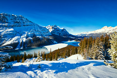 Snow at Peyto Lake (Bluesky251) Tags: adventures alberta banff banffnationalpark beautiful blue bright canada cloud cloudline cold daylight daytime forest green hdr lake landscape light mountains mountainscape nationalpark natural nature outdoor outside peyto peytolake photography plant rock season sky skyline snow tour tourist travel trees water weather white winter world view
