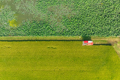 Mavic Air|DJI drone (里卡豆) Tags: 白河區 台南市 台灣 tw 臺灣 臺灣省 taiwan aerial photography aerialphotography mavicair dji 大疆 空拍機 mavic air drone