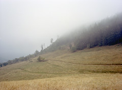 Sudety Mountains, Poland. (wojszyca) Tags: fuji gsw680iii 120 6x8 mediumformat fujinon sw 65mm kodak portra 400 mountains nature landscape forest haze fog clouds