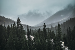 Shadows on the Horizon (miss.interpretations) Tags: shadows mountains coloradocold winter sadness canon6dmarkii 35mml colorado trees stark fog mist canon treeline regrets sky clouds chill rachelbrokaw silhouette mountain mood moody outdoor nature season