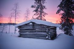 Old barn in morning glow (Helena Normark) Tags: barn oldbarn weatheredbarn winter snow kvarnåsen västerbotten sweden sverige sonyalpha7 a7 35mm lensbaby burnside35 lensbabyburnside35 lensbabylove seeinanewway