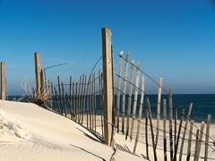 P1150340 (alukahn) Tags: assateague beach