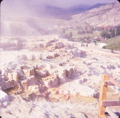 Yellowstone National Park - August 1980. (Stabbur's Master) Tags: montana westernusa westernus west wyoming yellowstone yellowstonenationalpark nationalpark usnationalpark mammothhotsprings