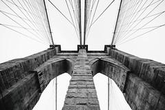 Structured Photography Stories (Thomas Hawk) Tags: america brooklyn brooklynbridge manhattan nyc newyork newyorkcity usa unitedstates unitedstatesofamerica architecture bridge bw fav10 fav25 fav50 fav100