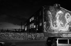 Backyard Berlin Lichtenberg (elisachris) Tags: berlin lichtenberg hinterhof backyard graffiti kunst art urbanart blackandwhite schwarzweis nacht night dark ricohgr
