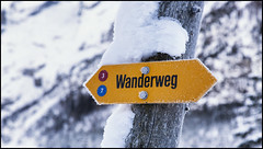 _SG_2019_01_6019_IMG_5706 (_SG_) Tags: schweiz suisse switzerland daytrip tour wandern hike hiking kandersteg lake oeschinen oeschinensee upper station heuberg panorama unterbärgli oberbärgli nature aussicht view unesco world heritage trail mountain berge loop winter ice frozen fishing cold