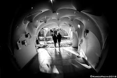 darkCAVE (Marco Pacini) Tags: marcopaciniphoto venezia architecture archilovers architettura archistar archiporn biennale blackandwhite blackwhite blackandwhitephoto bn bnw bnwarchitecture bnwphotography bnwphoto nikon nikonitalia nikoncameras nikonphotography nikkor nikkorlens nikonclub ni fisheye club16