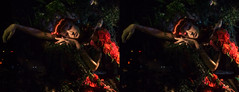 DSCF2047 (Mondo Circus Imaging) Tags: 3d stereographic stereoscopic stereogram christmas christmaswindows holidays holiday holidaywindows newyork nyc display windowdisplay retail bergdorfgoodman