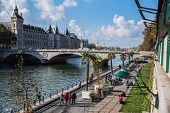 La Seine... (odile lm) Tags: seine paris promenades palmiers pont promeneurs quai
