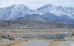 20140123_mono_lake_019 (petamini_pix) Tags: monolake california tufa lake landscape water mountains