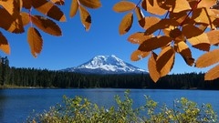 Takhlakh Lake (bulldog008) Tags: takhlakh lake mtadams washington gifford pinchot national forest nature landscape wilderness water fall color season scenic mountain sky beautiful recreation snow glacier snowcapped mt adams day pacific northwest north west pnw volcano usa america