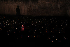 rememberance (Andrew Eadie) Tags: armistice centenary remembrance ww1 war peace art installation tompiper miracalix deborahshaw philsupple annamorrissey mikejones torches yeoman warders tower london canonefs1585mmf3556isusm andreweadie beyondthedeepeningshadow
