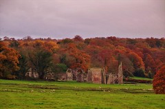 Photo of Fields, fall and folly
