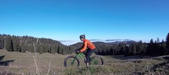 Quite A Different Beast (29in.CH) Tags: fall autumn fatbike ride 16112018