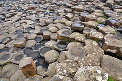 Giant's Causeway (Stefan Jürgensen) Tags: unescoworldheritagesite unesco worldheritagesite giants causeway giantscauseway countyantrim antrim northernireland ireland