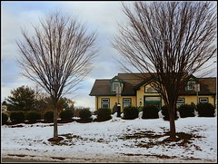 Winter Landscape In Chelmsford, MA. (snc145) Tags: winter seasons sky clouds trees bushes snow building architecture outdoor nature photo editedimage chelmsford massachusetts usa landscape scenery november172018 stevenchateauneuf vividstriking