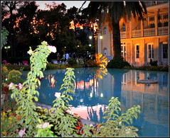 la nuit sera belle ! (Save planet Earth !) Tags: iran shiraz travel voyage amcc nikon jardin eram