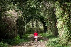 Framed (Tiomax80) Tags: fort mahon fortmahon walk walking nature natural frame framed naturalframe sand dunes sanddunes somme baiedesomme baie de picard picardie france nikon d610 babygirl nikkor woods trees