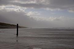 DSC02783 (ZANDVOORTfoto.nl) Tags: zandvoort edwin keur fotografie aan zee strand nederland netherlands kust coast shore beach beachlife strom stormy weather stormyweather wind hardwind sandstorm