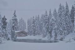 Grouse Mountain (GARFIELA) Tags: nieve snow grouse mountain canada vancouver invierno winter mountains