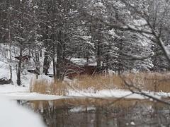 (sonjawitting) Tags: reflections reeds boathouse landscapecaptures landscapephotography snow finland seaside nordicbeauty nordicnature astoundingimage winterwonderland winterlandscape