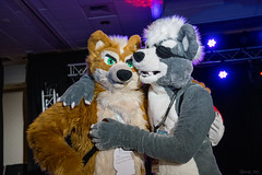 DSC09024 (Kory / Leo Nardo) Tags: pacanthro pawcon paw con pac anthro convention fur furry fursuit suiting mascot sona fursona san jose doubletree hotel california dance party deck animals costuming pupleo 2018