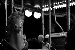 Il giro della mia giostra (maybe..78) Tags: pensiero riflessi ombra luce amore cuore christmas barbarabusi digitale digital prospettiva shadow ombre view veduta desiderio volo libertà dream nature freedom viaggio secret circo natura nikon nikond90 emozione emotion composizione composition cavallo giostra giro bergamo natale horse sogni giochi carosello gioco bambini biancoenero blackandwhite monochrome travel portrait lombardia parco