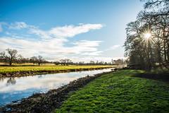 Attingham Park (williamrandle) Tags: attinghampark shropshire england uk 2018 winter river water reflections riverbank field tree trees sunburst bluesky clouds serene pretty green grass shadows nikon d750 tamron2470mmf28vc sky