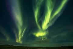 Dancing lights (Sizun Eye) Tags: auroraborealis aurore auroresboréales aurora northernlights night nightphotography iceland september 2017 sizuneye travel nikond750 nikon1424mmf28 nikkor 1424mm nature naturalphenomenon