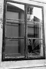 gebrochenes Fenster mit Spiegelung (jazzfoto.at) Tags: sw bw schwarzweiss blackandwhite blackwhite noirblanc bianconero biancoenero blancoynegro zwartwit pretoebranco sonyrx100m3 rx100m3 rx100miii sonyrx100iii sonydscrx100iii dscrx100iii
