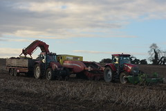 McCormick T3 XTX 165 Tractor with a Standen Pearson Potato Flail & a Grimme GZ1700 Potato Harvester filling Potato Boxes on a Carey Trailer drawn by a Case IH CS150 Tractor (Shane Casey CK25) Tags: mccormick t3 xtx 165 tractor standen pearson potato flail grimme gz1700 harvester filling boxes carey trailer drawn case ih cs150 agro red cnh casenewholland potatoes spud spuds tattie tatties dig digging traktor traktori tracteur trekker trator ciągnik castletownroche crop crops agri agriculture farm farmer farming county cork ireland irish tillage pulling pull horse horsepower hp working work farmmachinery machinery land field harvest harvesting autumn