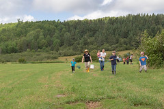_MG_3964.jpg (joanna.mills) Tags: play forestschool roachville tirnanog fruit livewell diabetesnb field bienvivre
