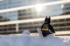 Batman in the snow (Ballou34) Tags: 2018 7dmark2 7dmarkii 7d2 7dii afol ballou34 canon canon7dmarkii canon7dii eos eos7dmarkii eos7d2 eos7dii flickr lego legographer legography minifigures photography stuckinplastic toy toyphotography toys puteaux îledefrance france fr stuck in plastic snow winter ski batman sun cold